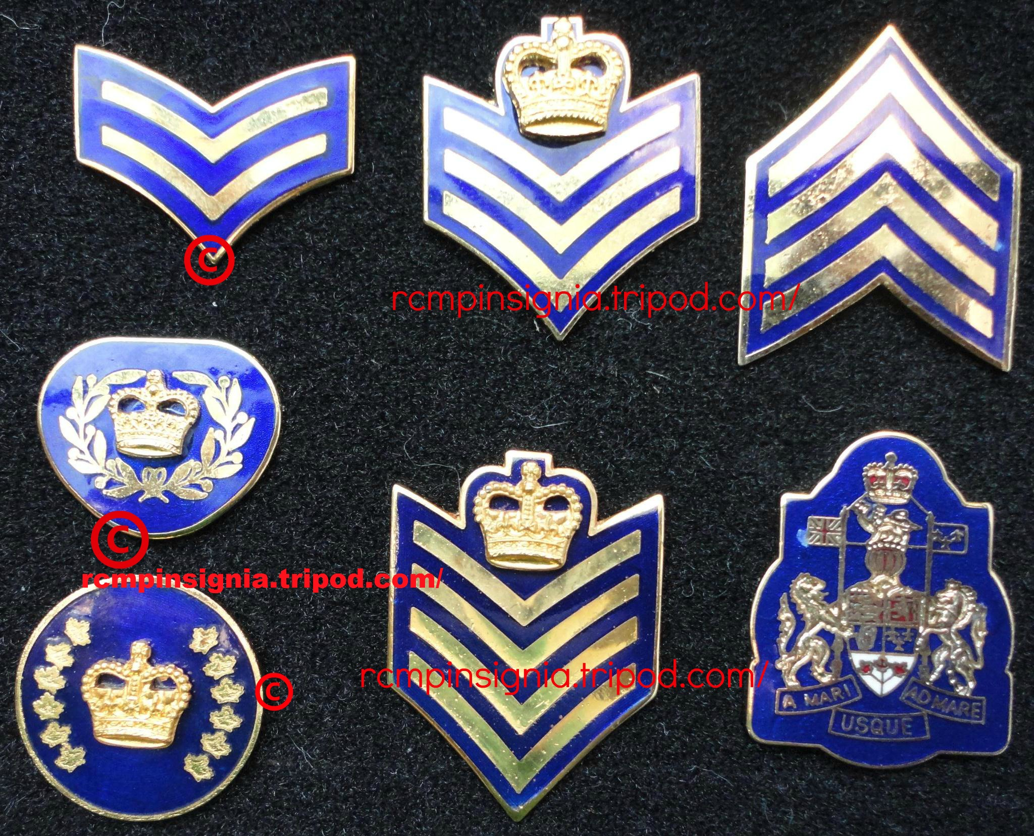 1915901 collar rank pins2.jpg?1392580765